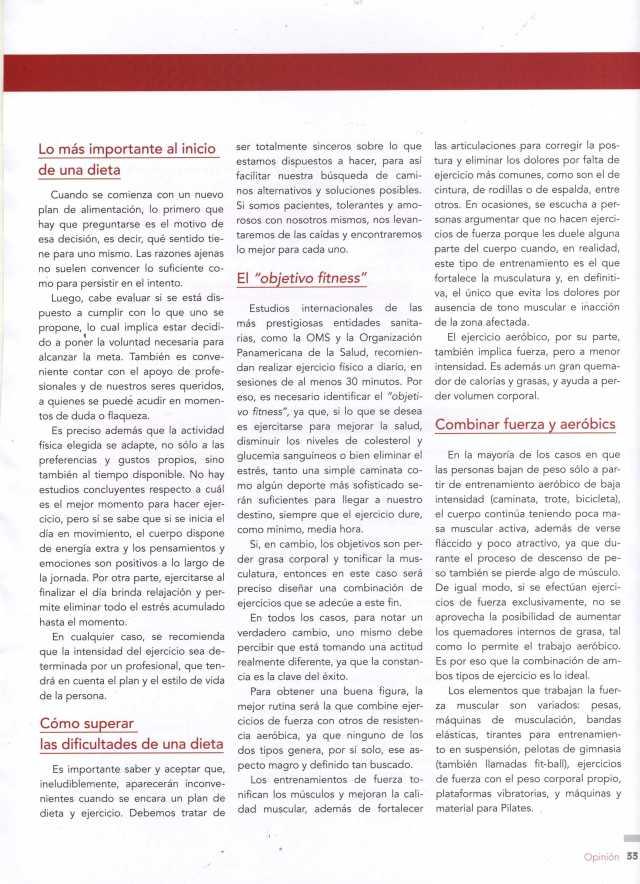 Concepto Estético Nov Dic 2012 Pág 33