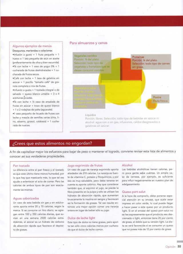 Concepto Estético Nov Dic 2012 Pág 35